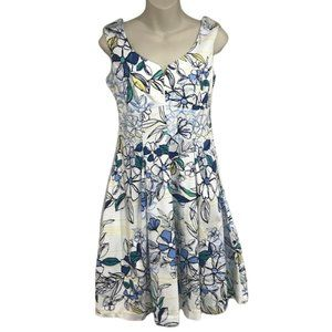 Christopher and Banks White Blue Floral Fit Flare